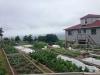 full-garden